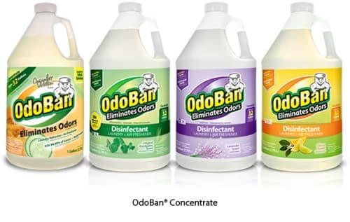 35 Gallon Odoban Concentrate Odor Eliminator & Disinfectant