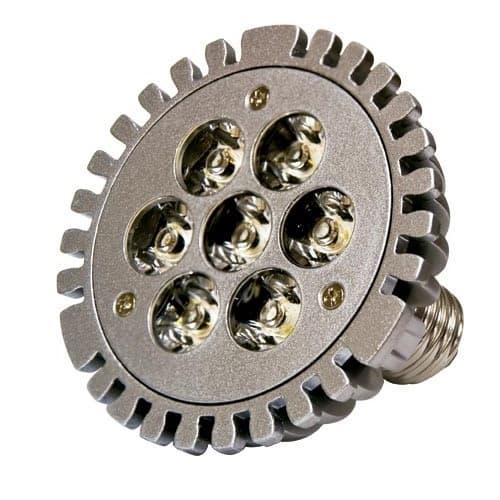 Dabmar 7W LED PAR30 Bulb, E40 Mogul Base, 120V, 3000K, Verde Green