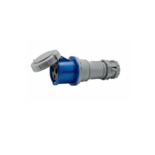 100 Amp Pin and Sleeve Connector, 2-Pole, 3-Wire, 250V, Blue