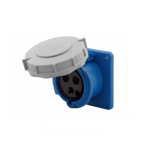 Eaton Wiring 32 Amp Pin and Sleeve Receptacle, 2-Pole, 3-Wire, 240V, Blue