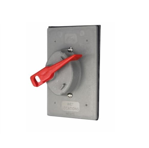 1-Gang Switch Cover, Lockable, Flush Mount, Vertical, Grey