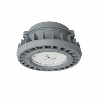 65W LED Jelly Jar Light, Hazard Rated, 9750 lm, 120V-277V, 5000K