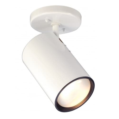 Semi-Flush Mount Close-to-Ceiling Straight Cylinder R30 Light Fixture