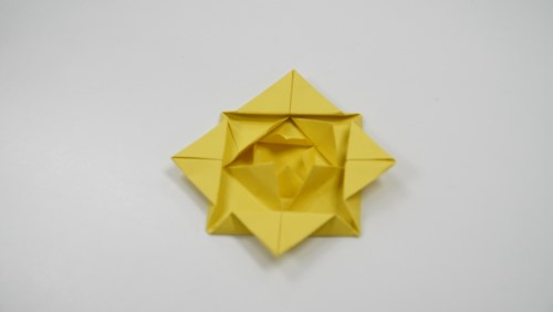 Origami water lily or bow