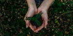 How To Create A Greener Work Environment
