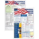 Mail-In Card State and Federal Labor Law Poster