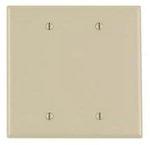 2-Gang Blank Plastic Wall Plate, Ivory
