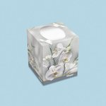 KLEENEX BOUTIQUE White 2-Ply Facial Tissue in Floral Box