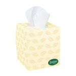 SURPASS BOUTIQUE GreenSeal White 2-Ply Facial Tissue in Flat Box