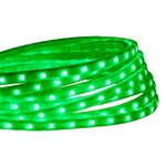 Green 3.3 Foot 120V  4W Per Foot LED Tape-Rope Light Kit