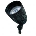 12W 10-in LED Directional Spot Light, RGBW, A23 Bulb, 2700K, Verde Green