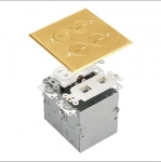 Brass 2-Gang Floor Box with 20A TRWR Duplex Receptacle and Datacom