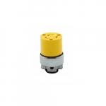 15 Amp Locking Connector, NEMA L5-15, 125V, Yellow