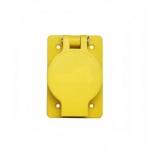 30 Amp Locking Receptacle, Watertight, Non-NEMA, Black