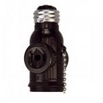 660W NEMA 1-15R Medium Base Socket Adapter w/ Pull Chain, Brown