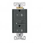 20 Amp GFCI Receptacle, Tamper Resistant, Silver Granite