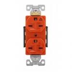 15 Amp Duplex Receptacle, Isolated Ground, NEMA 6-15R, Orange