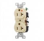 20 Amp Duplex Receptacle, Isolated Ground, NEMA 5-20R, Ivory