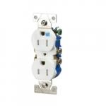 15 Amp Tamper & Weather Resistant Duplex Receptacle, Gray
