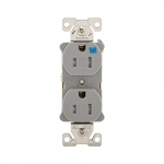 15 Amp Tamper & Weather Resistant NEMA 5-15R Duplex Receptacle, Gray