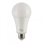 22W LED A21 Bulb, Dimmable, E26, 2550 lm, 120V, 5000K