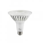 20W LED PAR38 Bulb, Long Neck, Dimmable, 45 Degree Beam, E26, 1700 lm, 120V, 5000K