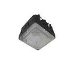 5000K 100-277V 80W Black Wet Locations LED Canopy Light