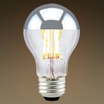 2700K 7.5W 80 CRI 700 Lumen A19 Filament LED Light Bulb
