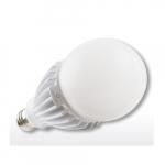 25W LED Bulb for Bollard/Post Top Lamps, E39 Mogul Base, 5000K