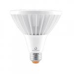 25W LED PAR38 Bulb, Flood Beam Angle, 2500 lm, 3000K, 120-277V