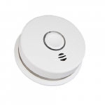 120V AC/DC Carbon Monoxide & Photoelectric Smoke Alarm w/Voice, 10 Yr Sealed Battery