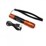 Rechargeable Waterproof LED Pocket Light w/ Lanyard