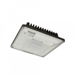40W LED Canopy Light, 175 MH Retrofit, 4938 lm, 5000K