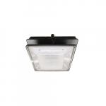 20W LED Canopy Light w/ Backup, 100W MH Retrofit, Type V, 2374 lm, 120V-277V, 5000K