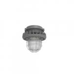 45W Hazard Rated LED High/Low Bay Light, 100W MH Retrofit, 5760 lm, 5000K, Grey