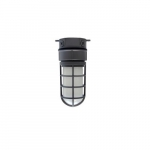 14.5W LED Vaporproof Jelly Jar w/ Ceiling Mount, 1020 lm, 3000K