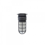 24W LED Vaporproof Jelly Jar w/ Ceiling Mount, 1890 lm, 5000K