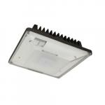 52W LED Low-Profile Canopy Light w/ Photocell, 0-10V Dim, 250W MH Retrofit, 6510lm, 4000K