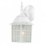 "14"" Adams Outdoor Wall Light, Frosted Glass"