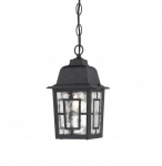 "11"" Banyon Outdoor Hanging Light, Clear Water Glass, Textured Black"