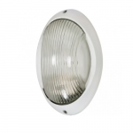 11in Bulk Head Light, Large Oval, White