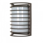 10in Bulk Head Light, Rectangle Cage, Architectural Bronze