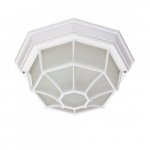 12in Outdoor Flush Mount Light, Spider Cage, White