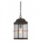 60W Howell Outdoor Hanging Light Lantern, Vintage Lamp Included