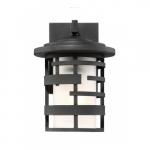 "Lansing 10"" Lantern Light Fixture, Textured Black, Etched Glass"