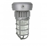 13W LED Jelly Jar Light, Vapor Proof, Silver, 5000K