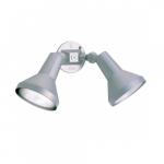 15in Security Flood Light w/ Adjustable Swivel, PAR38, 2-light, White