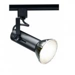 150W Track Light, Universal Bulb, Black