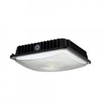 60W LED Canopy Light Fixture, Dimmable, 100-175W MH Retrofit, 7800 lm, 4000K, Black