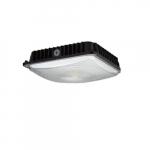 45W LED Canopy Light, 4000K, Black